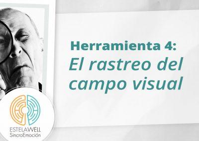 Herramienta 4 – El rastreo del campo visual