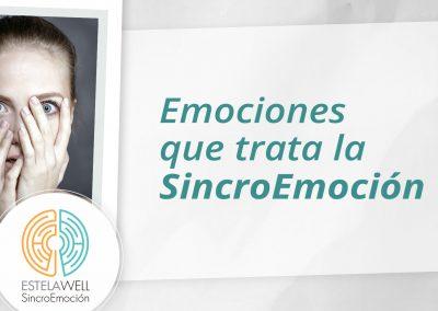 Emociones que trata la SincroEmoción